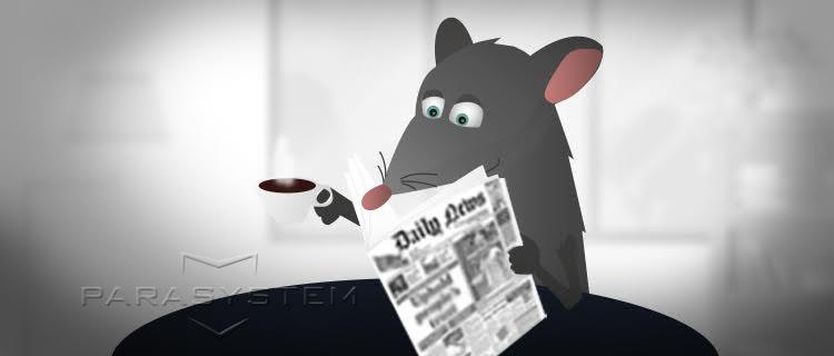 revue de presse deratisation