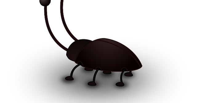 comment se débarrasser des blattes desinsectisation